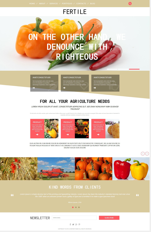 简单的国外蔬菜水果种植生产网页html模板