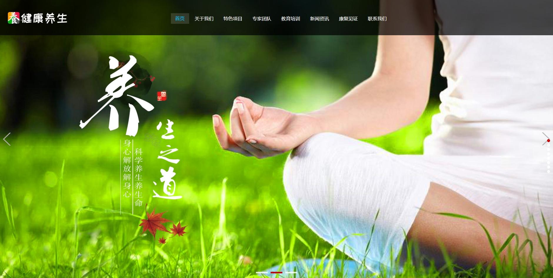 响应式经络养生健康类网站织梦dedecms模板(自适应手机端)