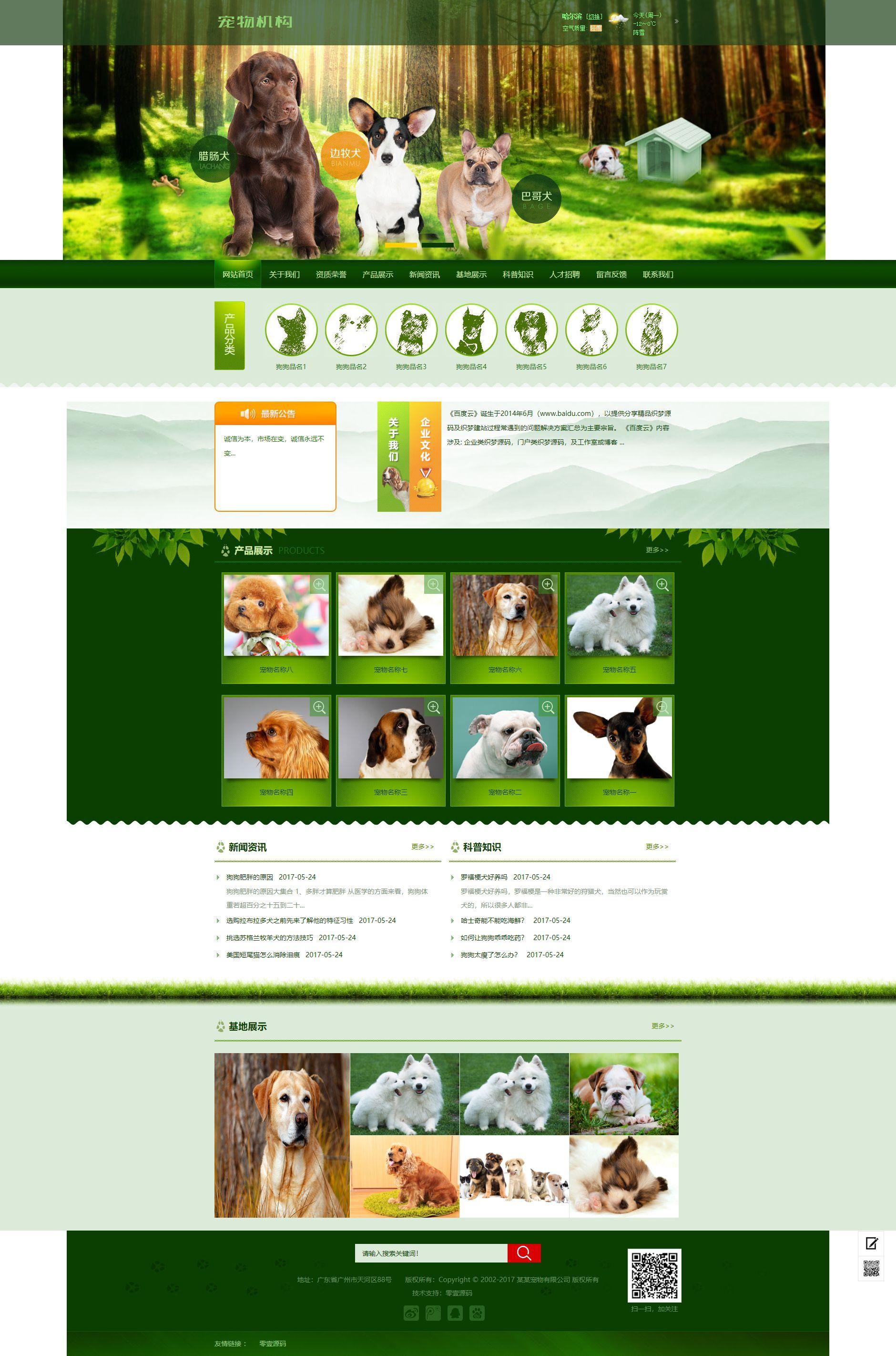 绿色宠物狗机构类网站织梦dedecms模板(带手机端)