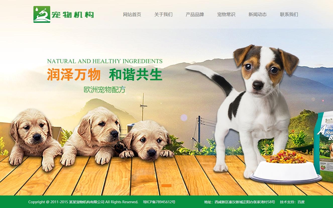 宠物动物机构类网站织梦dedecms模板(带手机端)