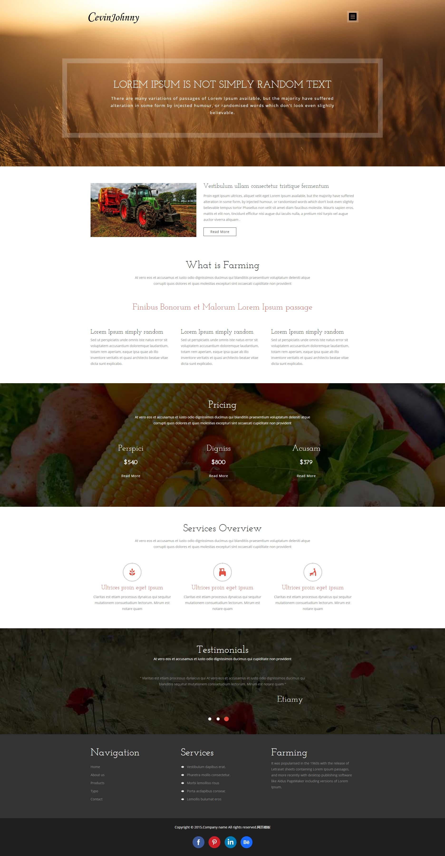 黑色简洁的蔬菜农场博客网站html源码